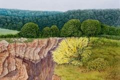 Steinbruch in der Eifel