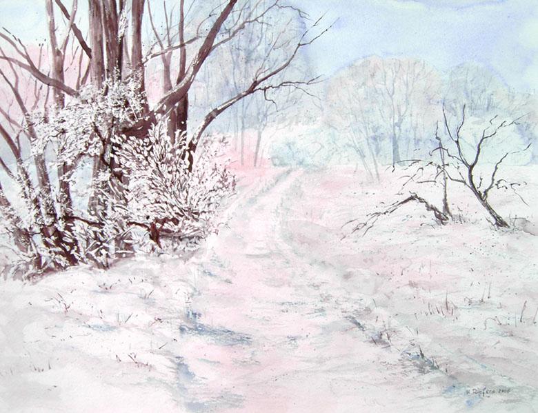 Winter in den Rheinauen