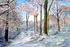 Winter im Buchenwald