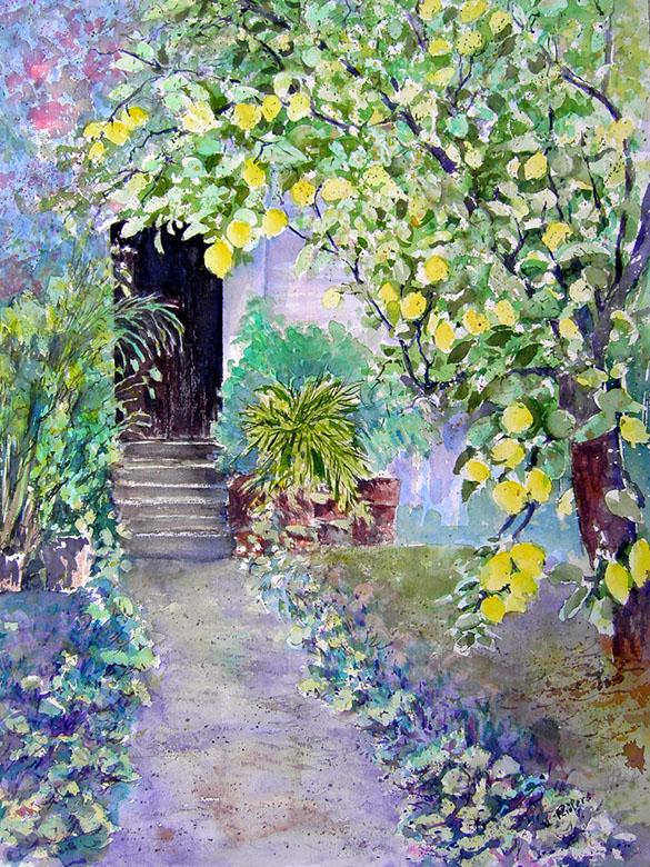 Vorgarten mit Zitronenbaum